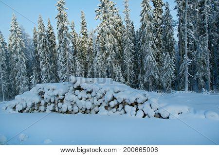 Winter landscape. snow-covered stack of logs Winter snowflake Siberia  landscape.