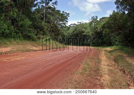dirt road through the rainforest heading to Cape York Peninsula Australia