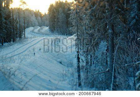 snowfall  russian  Winter landscape. frozen taiga forest