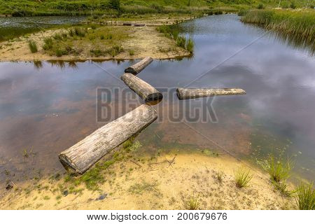 Logs As Stepping Stones In Pond