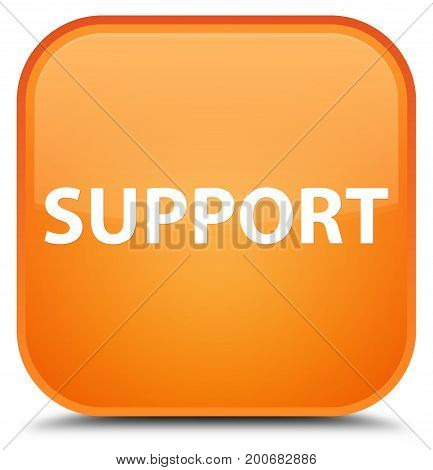 Support Special Orange Square Button