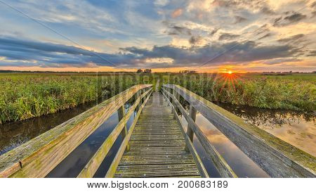 Wooden Bridge On Cycling Track