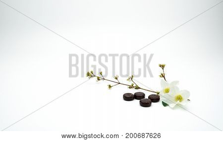Herbal medicine lozenges for relief cough put near white flower and branch on white background with copy space.