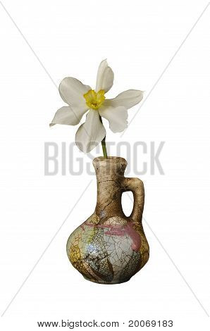 Narcissus In A Ceramic Jug