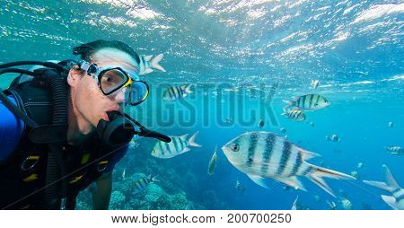 School of fish with man scuba diver exploring sealife. Tropical sea with beautiful ocean ecosystem.