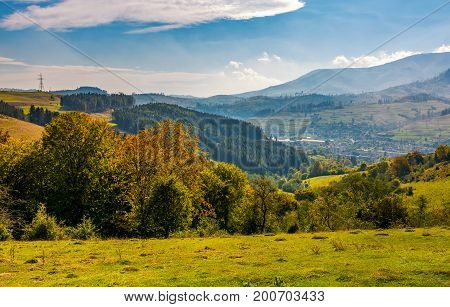 Forest On Hillside In Autumnal Countryside