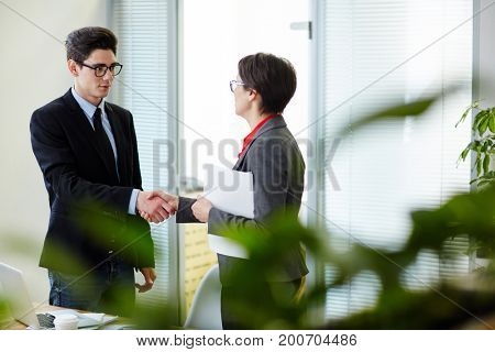 Employer congratulating new subordinate by handshake after interview