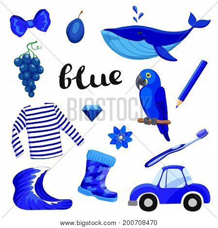 Blue or Indigo. Learn the color. Education set. Illustration of primary colors. Vector illustration