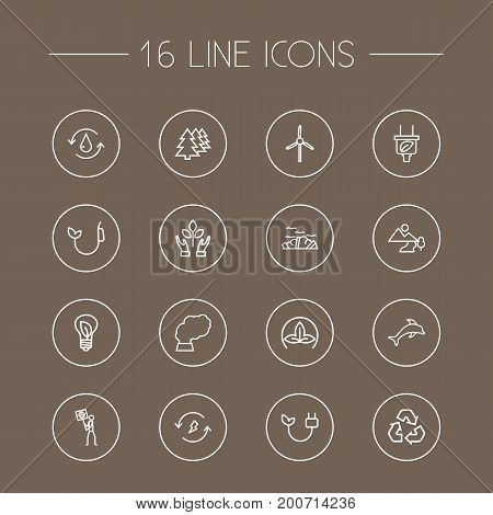 Collection Of Charge, Water, Dolphin And Other Elements.  Set Of 16 Atmosphere Outline Icons Set.