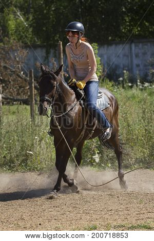 Accident with horse, fall of riderHorseback riding lessons, telephoto shot