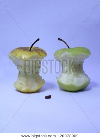 Two leftover bits of apple  and one seed.
