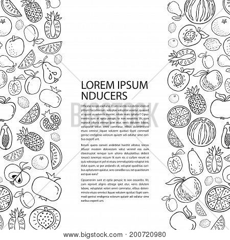 Poster template with hand drawn fruit. Unique line style vector illustration. Organic product for healthy food concept place for text. Vertical composition