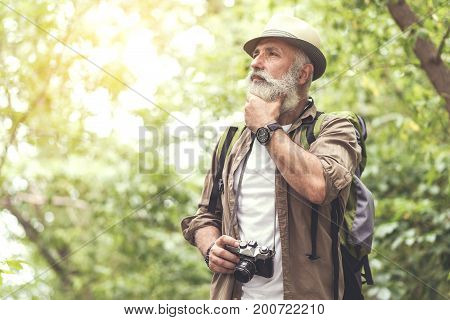 Pensive old male photographer is thinking about taking good photo. He is standing in forest and touching his beard. Copy space