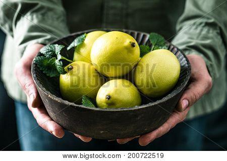 Organic fruit. Farmers hands with freshly harvested fruit. Fresh organic lemons.