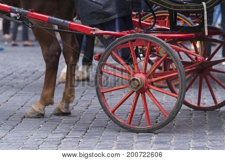 traditional horse-drawn carriage in rome italy in front of the  pantheon