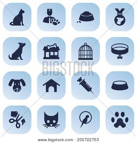 Collection Of Sitting, Footprint , Neckband Elements.  Set Of 16 Mammal Icons Set.
