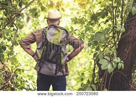 Ready for journey. Confident old man is standing with arms akimbo in forest. He is carrying touristic backpack. Focus on his back