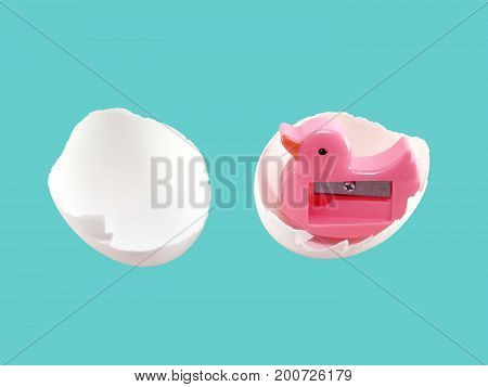 close up pink sharpener duck shaped in eggshell isolated on blue-green background, duck hatching from egg