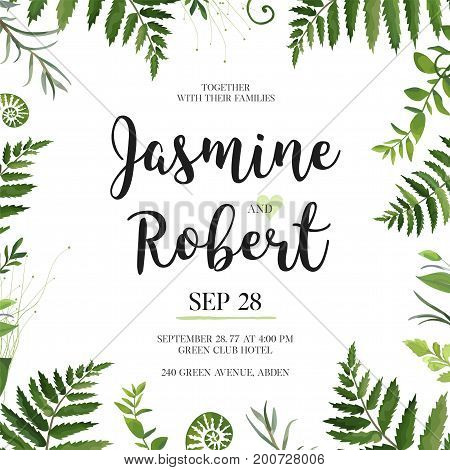 Vector design card. Natural botanical Frame Green forest herb eucalyptus Fern frond frame vector illustration. Polypodiophyta plant leaves decoration on white. Ferns forest grass border Wedding invite