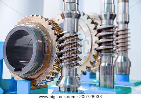 Worm-gear. Worm wheels and shafts of different sizes.
