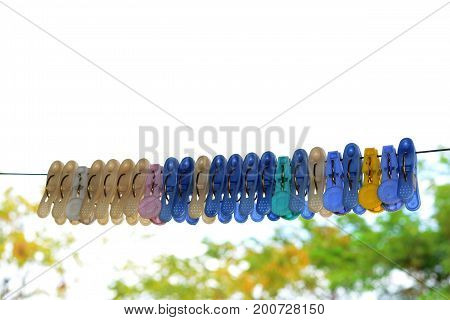 the cloth clamps on wire with blurry tree background