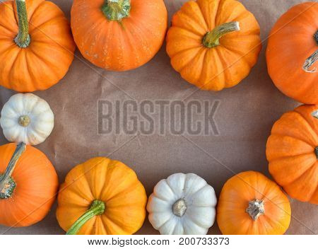 Ornamental pumpkins border on the paper. Autumn background