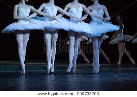 dancing, culture, choreography concept. four slender and graceful ballerinas dressed in costumes with snowy white feathers performing world-famous dance of the little swans
