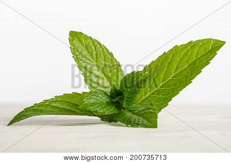 Fresh mint leaves on white wooden table