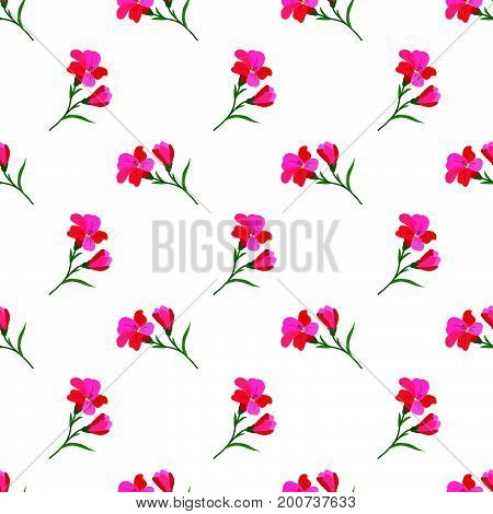 Seamless Background Image Colorful Botanic Flower Leaf Plant Red Freesia