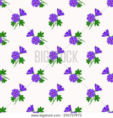 Seamless Background Image Colorful Botanic Flower Leaf Plant Violet Mallow