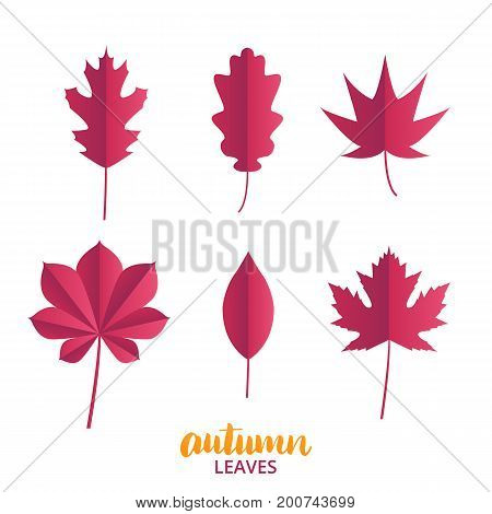 Autumn leaves. Collection of fall leaves in trendy flat style. Autumn vector leaves set
