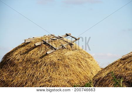 Hay and sky, village morning, Russian weekend.
