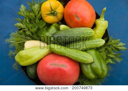Closeup of organic garden vegetables on plate: tomatoes cucumbers paprika herbs. Healthy eating. Cooking at home.