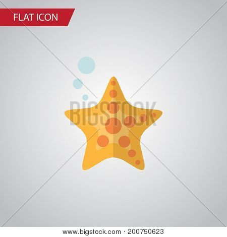 Sea Star Vector Element Can Be Used For Starfish, Sea, Star Design Concept.  Isolated Starfish Flat Icon.