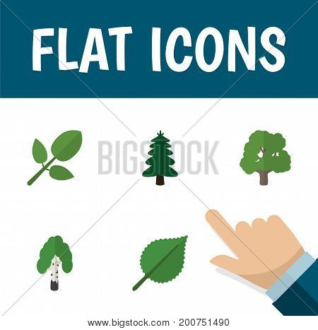 Flat Icon Ecology Set Of Decoration Tree, Park, Foliage And Other Vector Objects