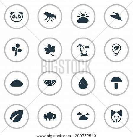 Elements Bear, Oil, Bird And Other Synonyms Animal, Panda And Environment.  Vector Illustration Set Of Simple Bio Icons.