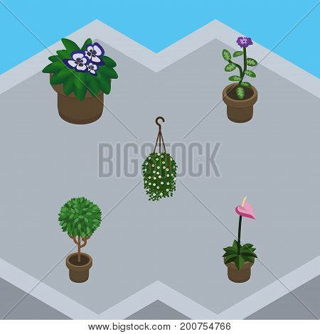 Isometric Plant Set Of Flowerpot, Blossom, Flower And Other Vector Objects