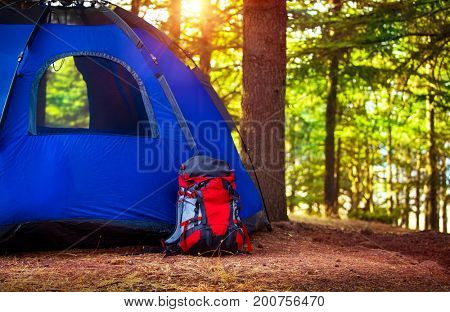 Camping in the forest, backpack near blue tent on the glade in fresh green woodland, extreme travel and tourism in the summer, active lifestyle concept