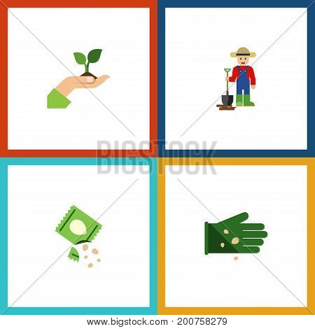 Flat Icon Seed Set Of Glove, Packet, Man And Other Vector Objects