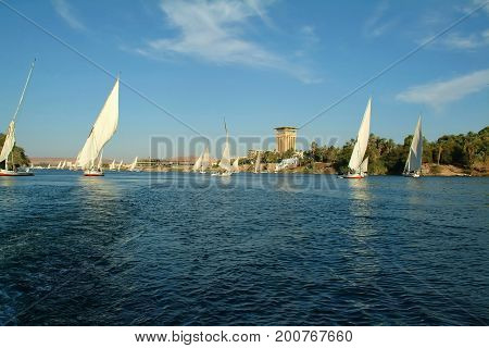 Sailboats on Nile river, Aswan, Egypt, North Africa, Africa