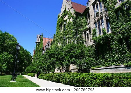 University Of Chicago At Summer, Il