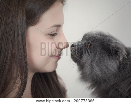 Young girl and gray cat nose to nose. Only the face and muzzle of a cat