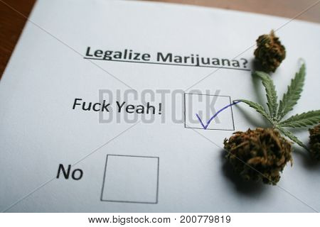 Legalize Marijuana Ballot Stock Photo High Quality