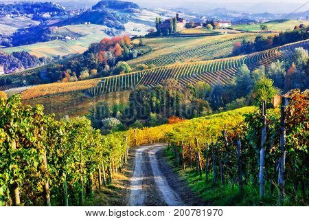 Vineyards and castles of Piemonte in autumn colors. North of Ita