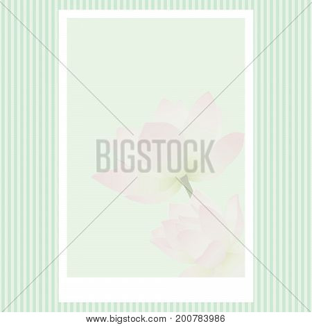 Vector greeting card with delicate lotus flowers. Blank template for congratulatory design with water lilies