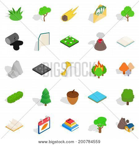 Woody icons set. Isometric set of 25 woody vector icons for web isolated on white background