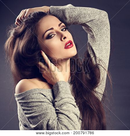 Beautiful Sexy Young Make-up Model Posing In Grey Blouse With Red Lipstick And Touching Her Long Hai