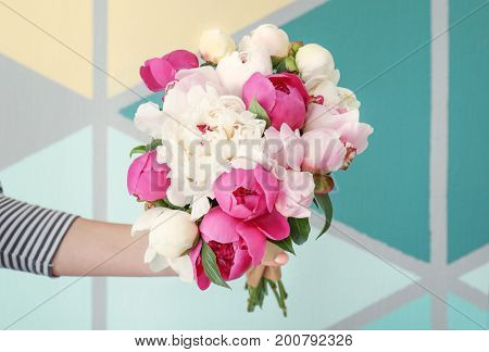 Female hand with bouquet of beautiful peony flowers on color background