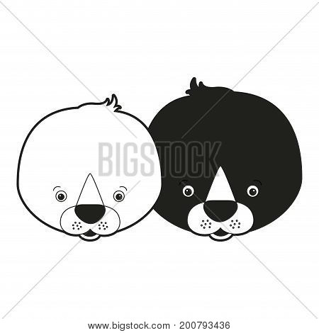 sketch silhouette monochrome caricature face couple cute animal seals vector illustration
