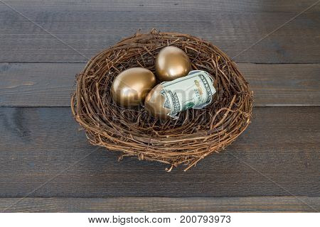 Golden eggs in nest with one egg cracked open with twenty dollar bill on wood background